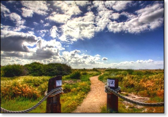 wetlandwalkwayHDRaa